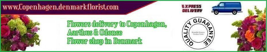 Florist Copenhagen Denmark flower delivery Copenhagen, Aarhus, Odense Quality online shop